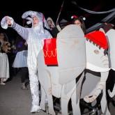 elephants-2014